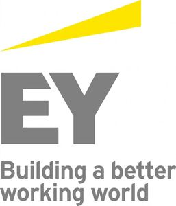 EY Start-up-Initiative